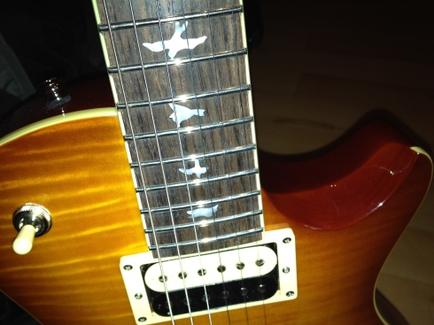 Though there *are* birds fluttering around on the fretboard